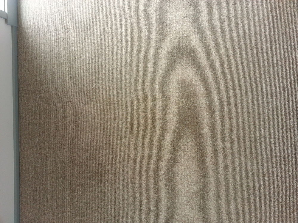 carpet-cleaning-stain-after