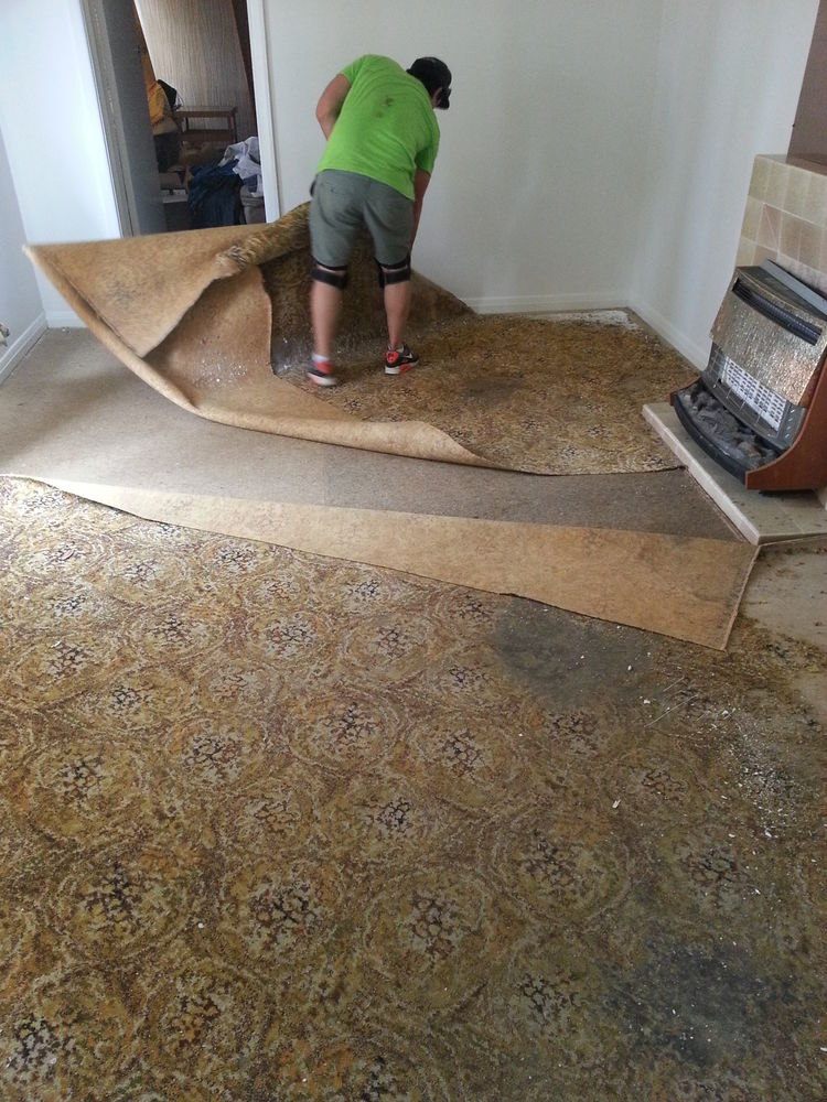 carpet-installation-remove-old